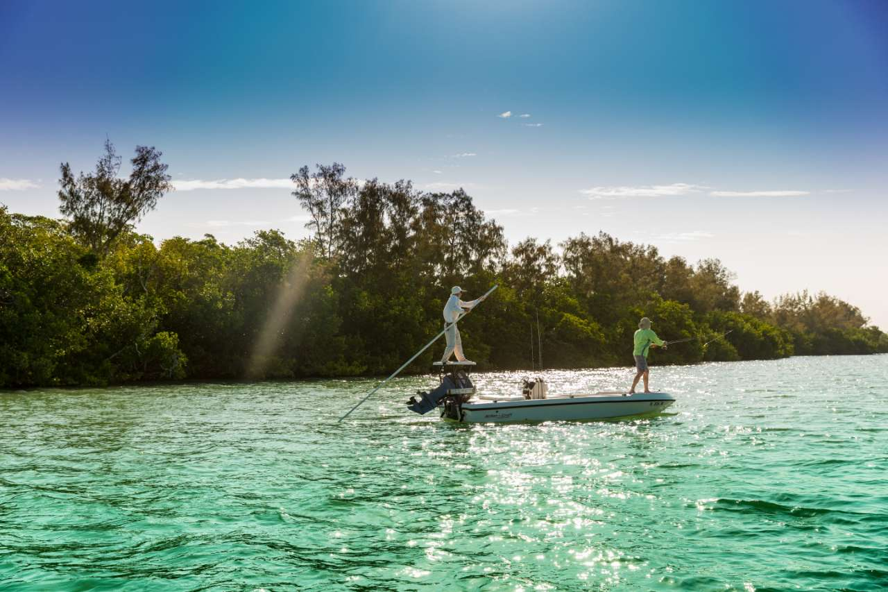 boating and fishing through the mangroves